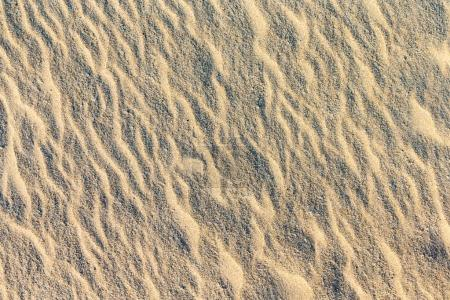 Photo for Sand wavy pattern of a beach in the summer - Royalty Free Image
