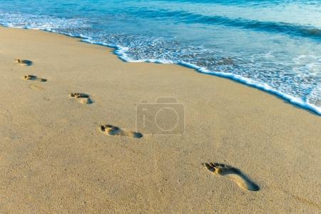 Photo for Untouched tropical beach in Sri Lanka - Royalty Free Image