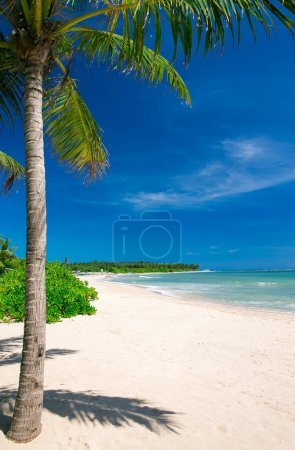 Photo pour Belle plage et mer tropicale - image libre de droit