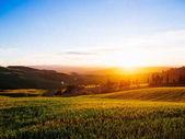 Beautiful tuscany landscape at sunset Italy