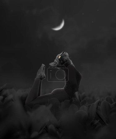 Surreal cat woman in asana under moonlight