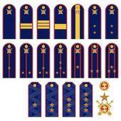 Insignia RF police