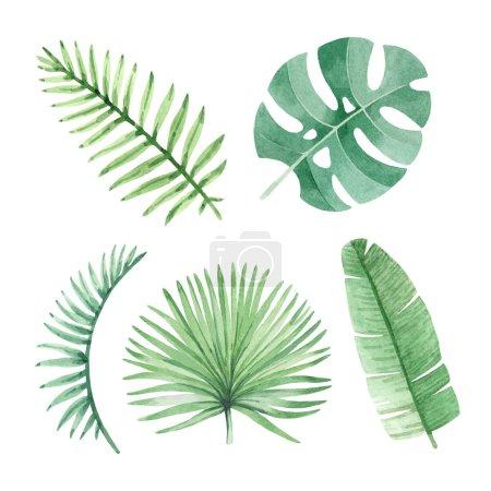 Photo pour Illustrations aquarelles de feuilles tropicales - image libre de droit