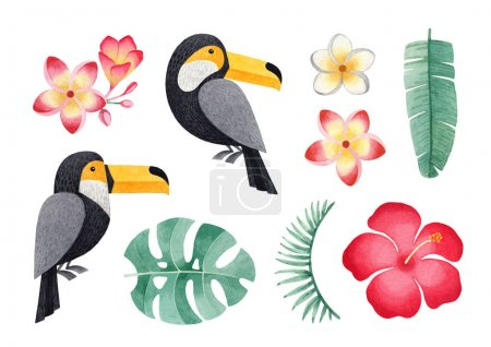 Watercolor illustrations of toucanes, tropical flowers and leaves