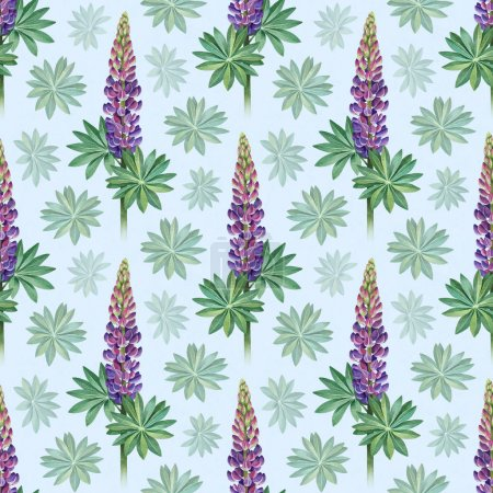 Watercolor illustrations of wild lupines. Seamless pattern