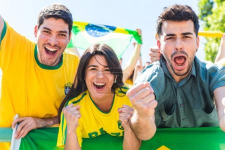 Brazilian supporters celebrating at stadium with flags