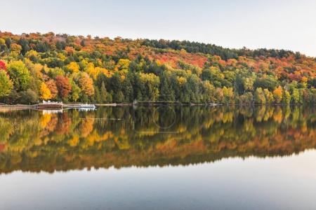Photo pour Scène d'automne, arbres avec reflets sur le lac. Belle et tranquille scène en Ontario, Canada, à l'automne le long d'un lac avec de l'eau douce - image libre de droit