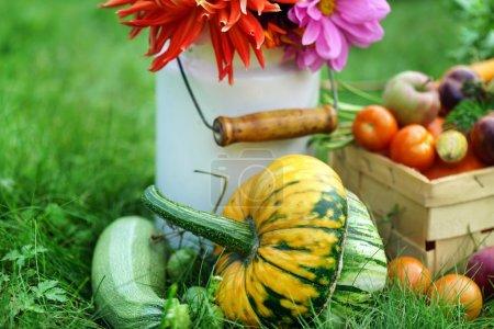 Farmland autumn arrangement