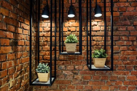 Photo for Green plants in the pots against brick wall - Royalty Free Image