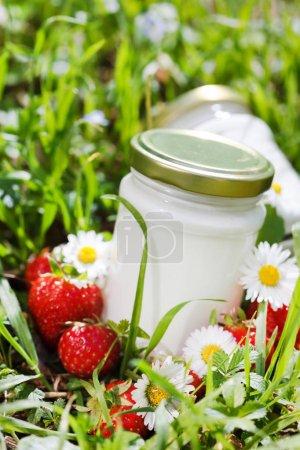 organic yogurt in grass