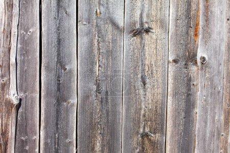 Photo pour Planches en bois texture fond - image libre de droit