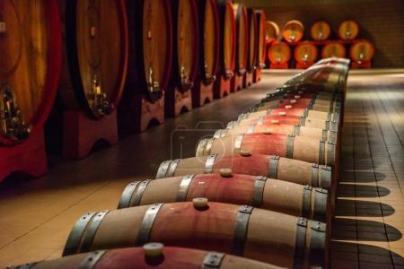 Wooden wine barrels