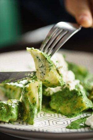 Photo pour Boulettes européennes, vareniki au fromage et pesto - image libre de droit