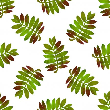 Photo for Hand drawn green watercolor rowan leaves on white background. Autumn seamless pattern. - Royalty Free Image