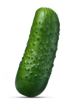 Photo for Fresh green cucumber isolated on white background - Royalty Free Image