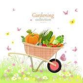 rustic garden wheelbarrow with vegetables