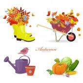 Autumn things and gardening equipment