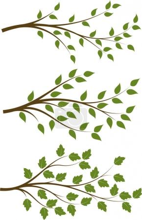 Illustration for Set of 3 brown vector floral branches with green leaves - Royalty Free Image