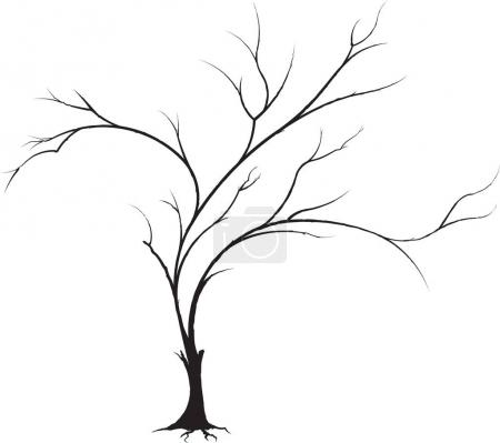Illustration for Decorative black vector tree for your design. - Royalty Free Image