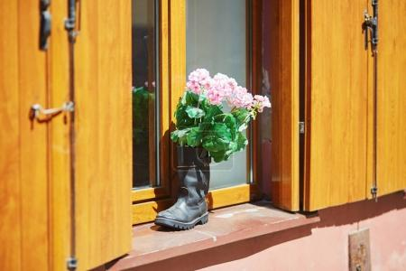 Pink flowers in high boot on window sill