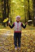 girl in the autumn