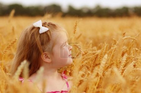 Photo pour Fille sur un champ de blé - image libre de droit