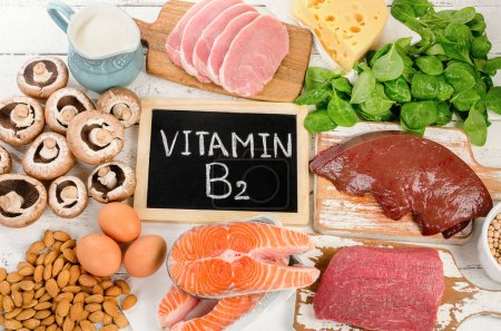 Photo for Foods Highest in Vitamin B2 (Riboflavin). Flat lay - Royalty Free Image