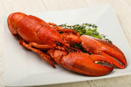 Delicious boiled Lobster