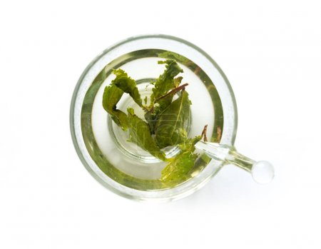 Aromatic green tea brewed in cup, topview