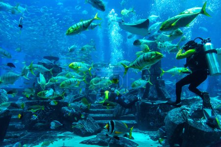 Large aquarium in Hotel Atlantis in Dubai
