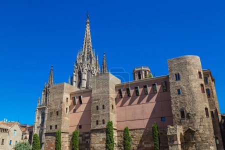 Barcelona Cathedral during daytime