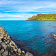Giant's Causeway in a beautiful summer day, Northe...