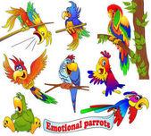 Obrázek souboru jasný emoční kreslený papoušků