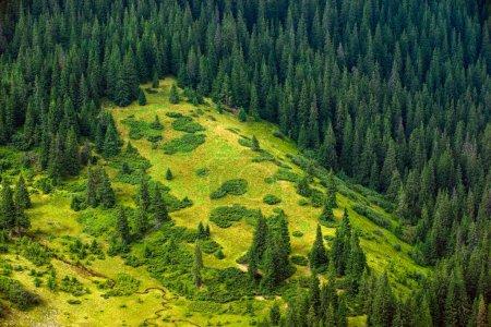 Photo pour Nature sauvage paysages, pentes alpines de montagne, terre vierge, aérien, pentes montagneuses - image libre de droit