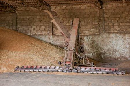 grain storage processing agro elevator