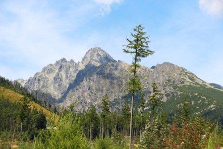 Photo pour Lomnicky Stit (Peak), Parc national des Hautes Tatras (Vysoke Tatry), Slovaquie - image libre de droit