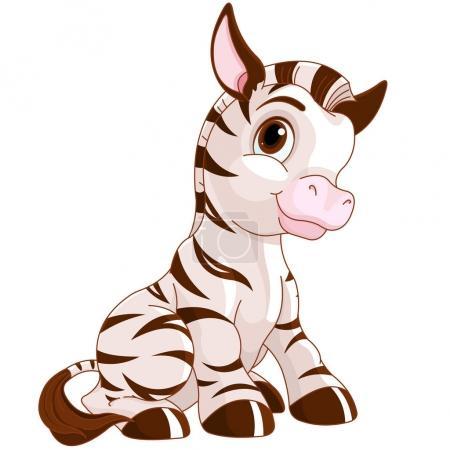 very cute Zebra