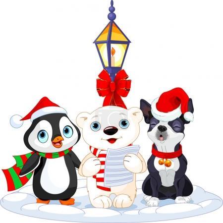 bear, penguin and Boston terrier