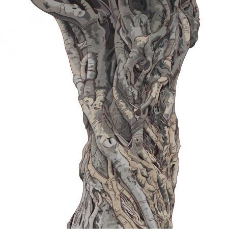 Illustration pour Illustration du tronc d'arbre exotique - image libre de droit
