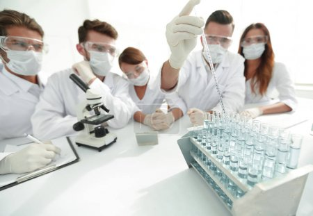Scientists at chemical laboratory during work