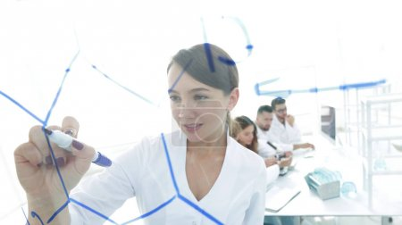 view through the transparent Board. female scientist makes a report to colleagues
