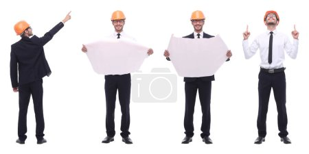 Photo for Panoramic photo collage of qualified architect isolated on white background - Royalty Free Image