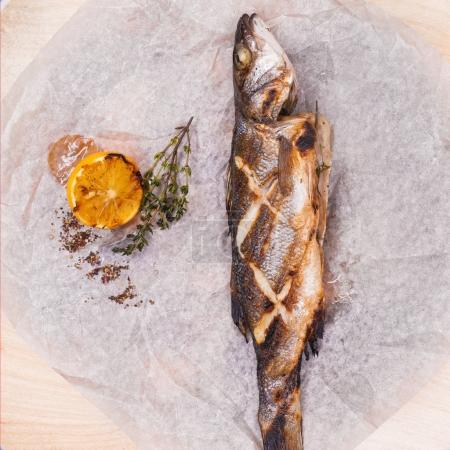 Fresh sea bass. Mediterranean fish, baked entirely...