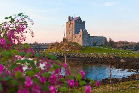 Photo pour Château Dunguaire au bord de la baie océanique au coucher du soleil. Kinvara, Co. Galway, Irlande - image libre de droit