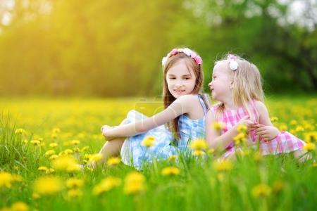 Girls in blooming dandelion meadow