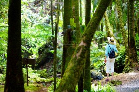 Tourist admiring tropical vegetation