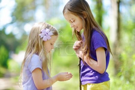 Two adorable little girls catching babyfrogs in summer forest. Active summer leisure with kids.