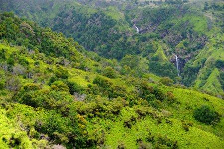 Two distant waterfalls in tropical hawaiian rainforest, Maui, Hawaii, USA