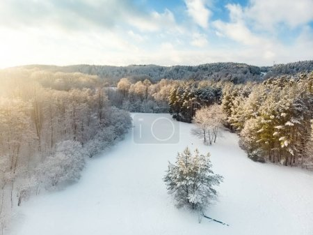 Photo for Beautiful aerial view of snow covered pine forests. Rime ice and hoar frost covering trees. Scenic winter landscape near Vilnius, Lithuania. - Royalty Free Image
