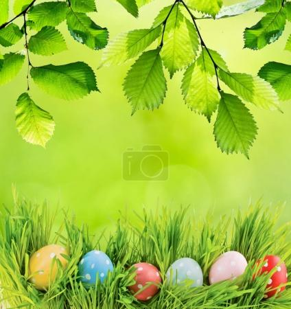 Row of Easter eggs